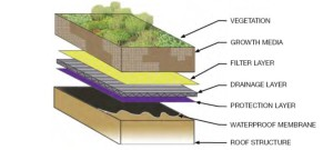 Greenroof Layers